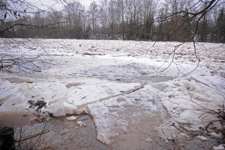 Ledus un vižņi Ogres upē. 2016. gada foto