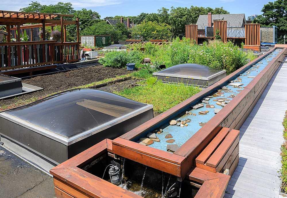 Šobrīd zaļie jumti pasaulē maina pilsētu arhitektūru, pārvēršot lielas rūpniecisko un sabiedrisko ēku jumtu platības par mauriņiem, puķu dobēm un dārziem.