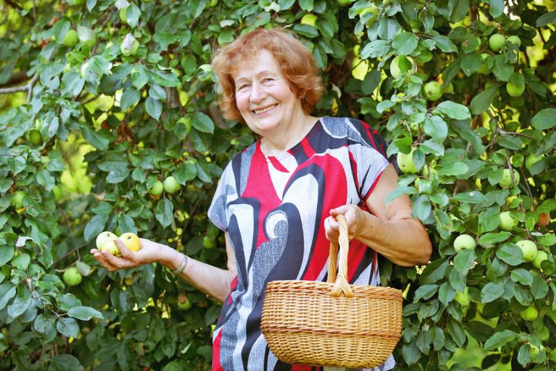 Rita Bukše