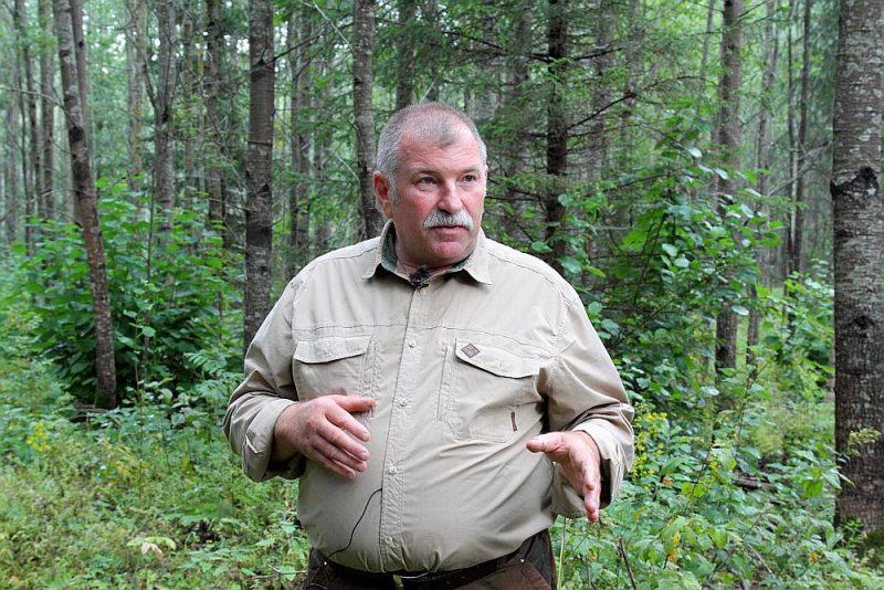 """Armands Cirsis: """"Jaunaudžu kopšanu nevar veikt kurš katrs pajolītis – sak, paskries ar zāģi pa mežu un kārtībā. Ja tā lieta nav skaidra, tad labāk paaicināt kādu, kurš to prot."""""""