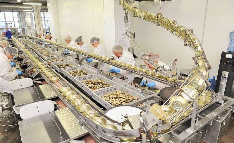 """Biežs ieteikums attiecībā uz bezdarbniekiem ar zemu kvalifikāciju – zivju pārstrādes uzņēmumi, piemēram, """"Kaija"""", meklē darbiniekus, lai iet tur! Tomēr mūsu stāsta varonis Andris pārliecinās, ka darbā pie konserviem prasa sieviešu rokas un kopumā priekšroka tiek dota pavāriem, pavāru palīgiem, viesmīļiem u. c., kas saskārušies ar pārtikas aprites jautājumiem. Atbildē """"Latvijas Avīzei"""" to apstiprina arī uzņēmumā. Tiek izvērtēts katrs pieteikums, bet uzņēmumā arī apzinās, ka šobrīd darba devējam ir izdevīgāka situācija. """"Jā, šodien darba meklētāju pieejamība ir ievērojami lielāka, nekā bija pirms vīrusa """"uzbrukuma"""", un darba devējiem ir lielākas iespējas atrast pareizo darbinieku attiecīgajai darba vietai,"""" atbildē raksta SIA """"Karavela"""" personāla vadītāja Jolanta Gaudieša."""