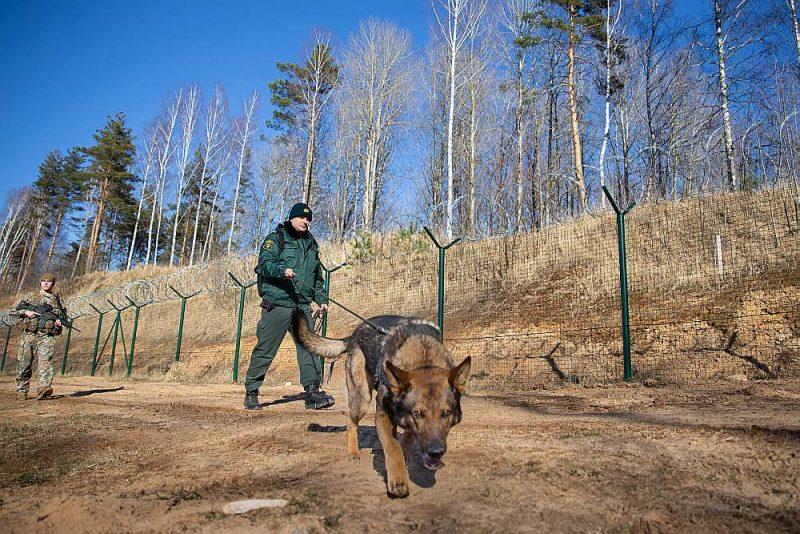 Zemessargi kopš marta sniedz atbalstu robežsargiem Latvijas–Krievijas robežas uzraudzībā.