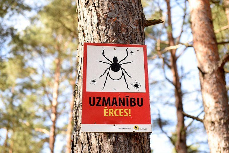 Brīdinājuma uzraksts dabas parkā Mangaļsalā. Ap 6–10% ērču Latvijā ir inficētas ar encefalīta vīrusu.