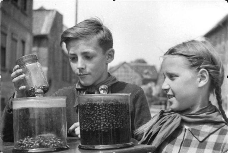 Austrumvācijas pionieri ar Kolorādo vabolēm un kāpuriem, kas salasīti kartupeļu laukā. Vaboļu nolasīšana bija laikietilpīgs darbs, kam vasarā bieži vien izmantoja bērnu darbaspēku.