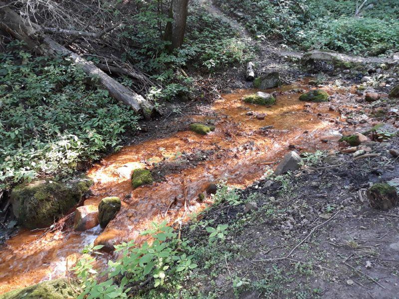 Saltupju Svētavota ūdenī ir daudz dzelzs un sēra savienojumu, kas avota gultni iekrāso oranžā krāsā.