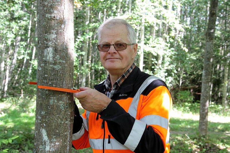 """Aivars Vanags: """"Ir jāatceļ noteiktais koku ciršanas vecums, īpaši jau eglei. Un arī tas, cik koku uz hektāra jāstāda, jāzina pašam mežkopim."""""""
