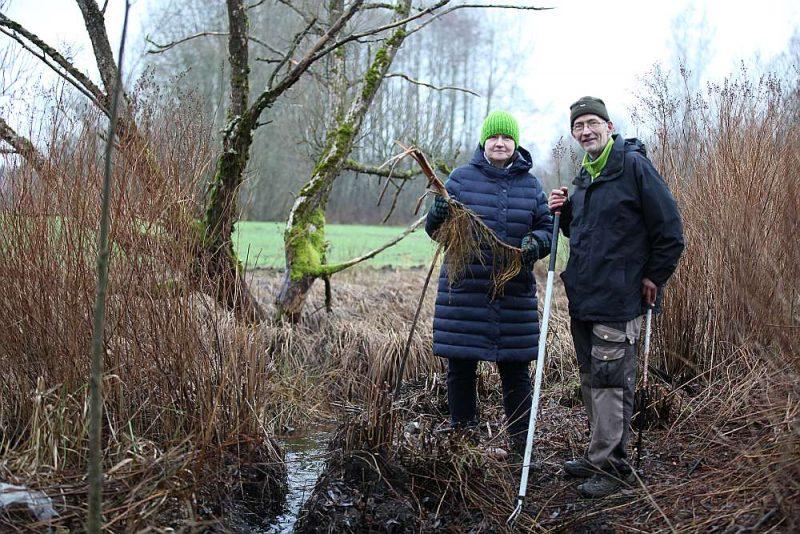 Par Latvijas upju galvenajām problēmām hidrobiologi Loreta un Andris Urtāni nosauc aizaugšanu ar zaļajiem augiem barības vielu dēļ, aizbirumu ar kokiem, krastu aizaugšanu ar krūmiem un bebru dambjus. Ar bebriem upju pētniekiem nākas pacīnīties arī savā lauku īpašumā Ainažu pusē.