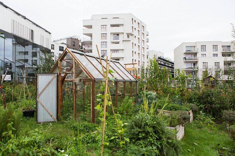 """""""Greenbizz"""" – videi nekaitīgas un ilgtspējīgas ekonomikas attīstības centrā Briselē darbojas inovatīvi jaunuzņēmumi, un koplietošanas dārziņā no apkārtējā teritorijā atrodamiem materiāliem uzbūvēta siltumnīca."""