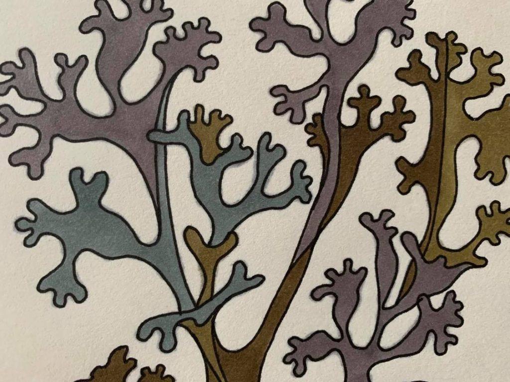 Rutas Linītes zīmējums.