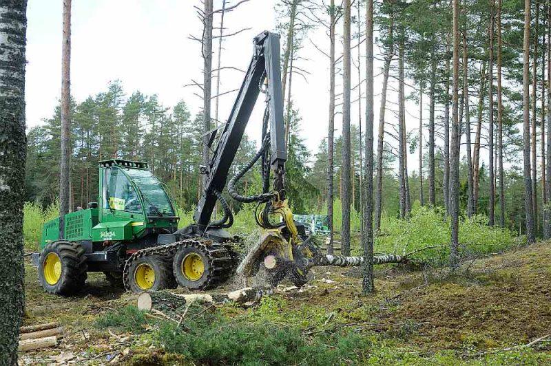 Covid-19 izraisītā ekonomiskā krīze un tās radītie ierobežojumi mežsaimniecības nozari ietekmējuši nevienmērīgi. Egles, priedes sīkbaļķiem, zāģbaļķiem, finierklučiem cenas šobrīd ir ļoti augstas, bet mazvērtīgai koksnei grūti atrast noietu. Piemēram, celulozes šķeldai un papīrmalkai pēdējie 11 mēneši ir bijuši sliktāki kā nekad iepriekš.