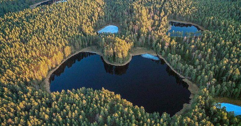 Skatoties no putna lidojuma, Salaiņa ezers Smiltenes novadā atgādina Latvijas kontūru.