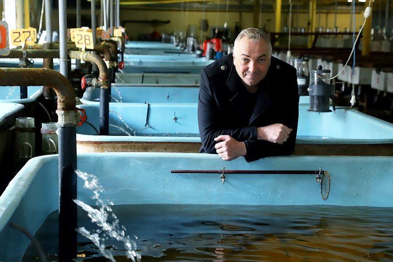 """Zivju audzētavas """"Tome"""" vadītājs Ivars Putviķis pie to lasēnu baseiniem, kuri drīz dosies uz jūru."""