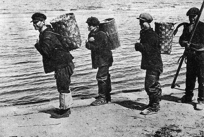 Zvejnieki – zivju nesēji 20. gs. sākumā.