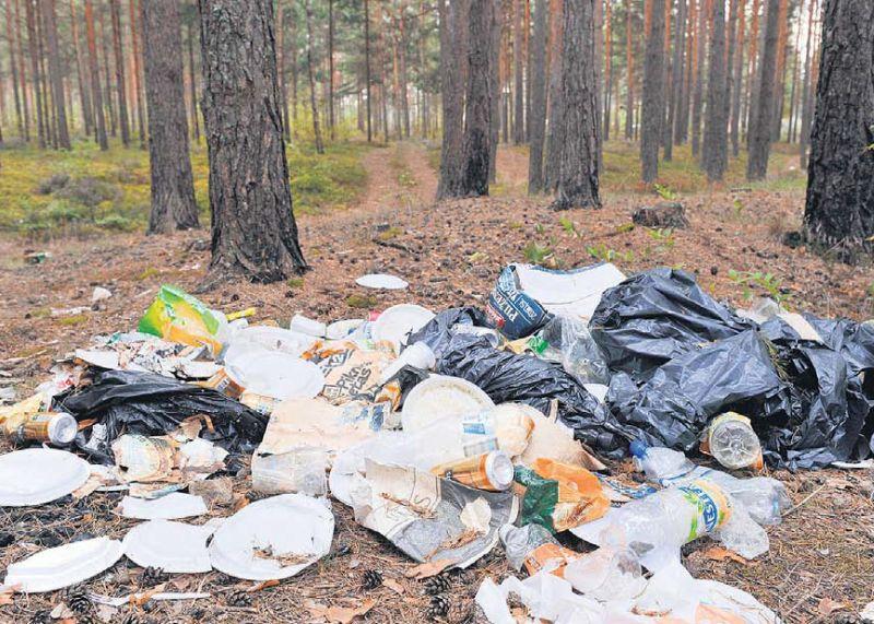 """Meža piecūkotāji lielākoties aiz sevis atstāj sadzīves atkritumus, vadoties pēc principa: """"Kāpēc jāpiemaksā par to, kas man nav derīgs?"""" Tomēr jārēķinās, ka turpmāk šāda rīcība tiks ne tikai sodīta stingrāk, bet arī darīta zināma plašākai sabiedrībai."""