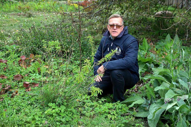 Māris Narvils savā kolekcijas dārzā, kur savāktas vairāk nekā 100 dažādu augu sugu.